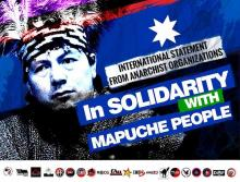 Solidarity with the Struggle of the Mapuche People